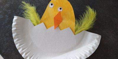 De uiltjesklas – leren over kuikentjes